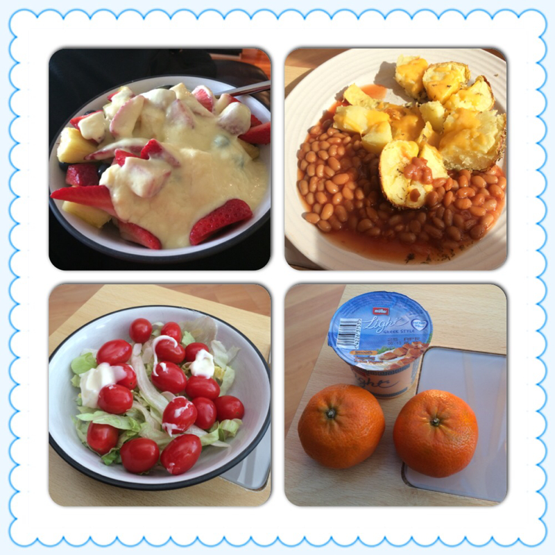 My Pregnancy Food Diary SW-style-image-1769941144.jpg