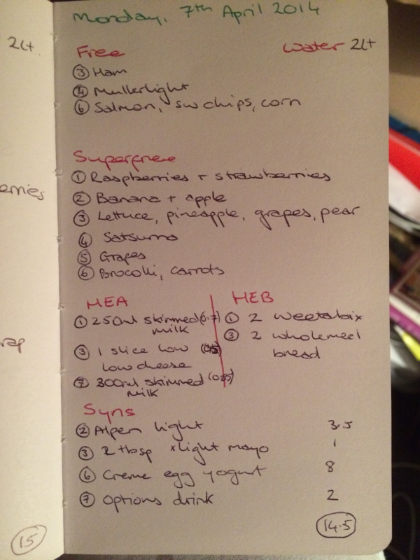 My Pregnancy Food Diary SW-style-image-903776123.jpg