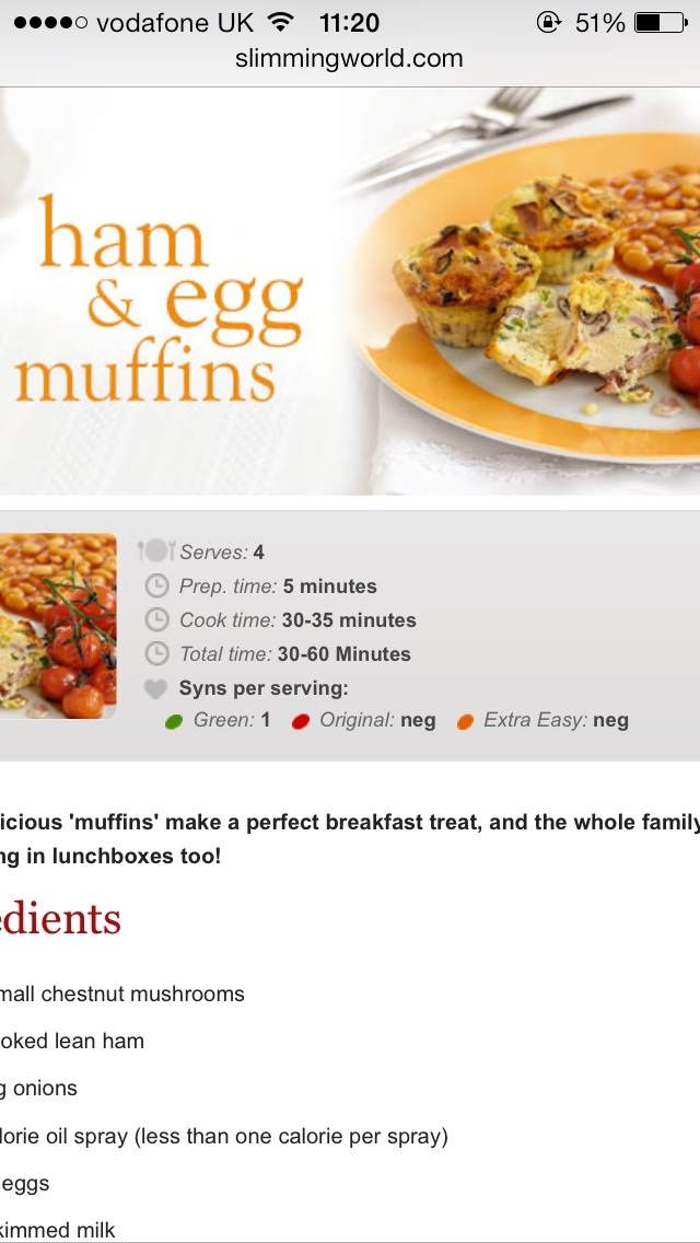 What does 'neg' mean on the slimming world recipes?-image.jpg