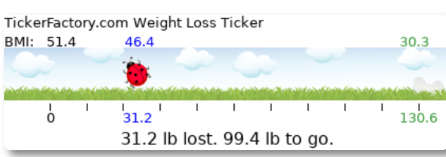Weight_Loss_Ticker_-_TickerFactory.com_-_2021-06-29_09.40.23.png